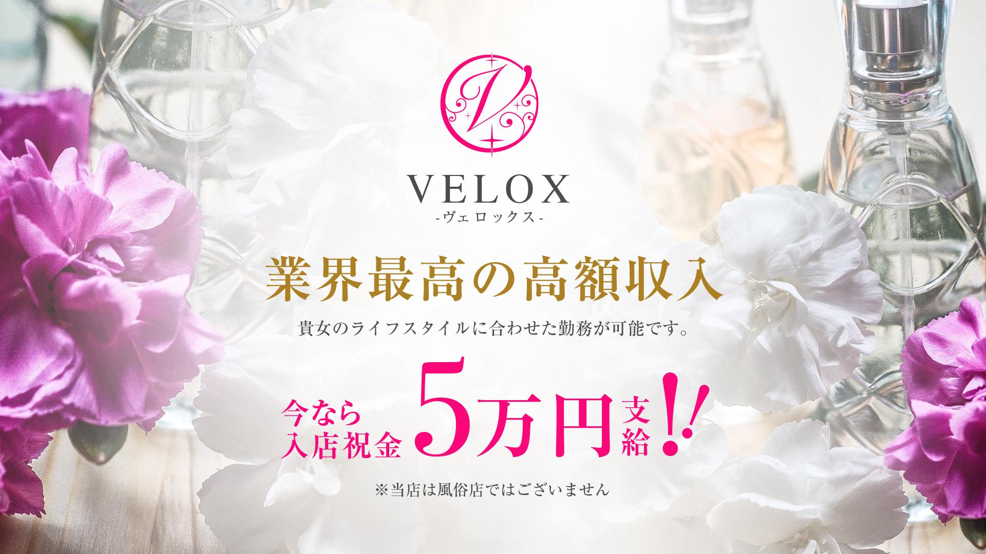 VELOX -ヴェロックスの求人画像
