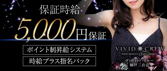 VIVID CREW 神戸三宮店