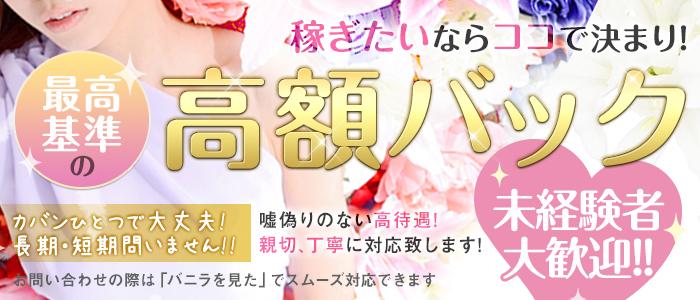 わっしょい☆元祖廃男コース専門店の求人画像