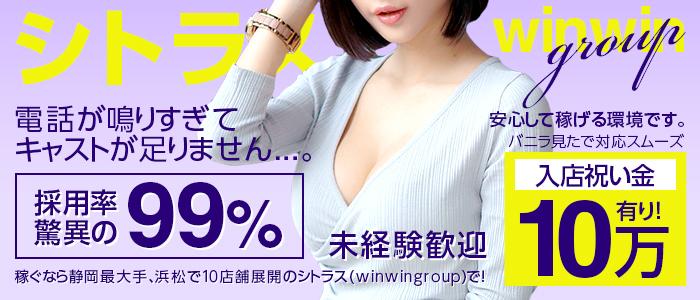 未経験・シトラス(winwingroup)