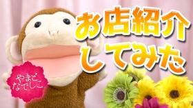やまとなでしこ-愛知三河人妻デリヘルのバニキシャ(スタッフ)動画
