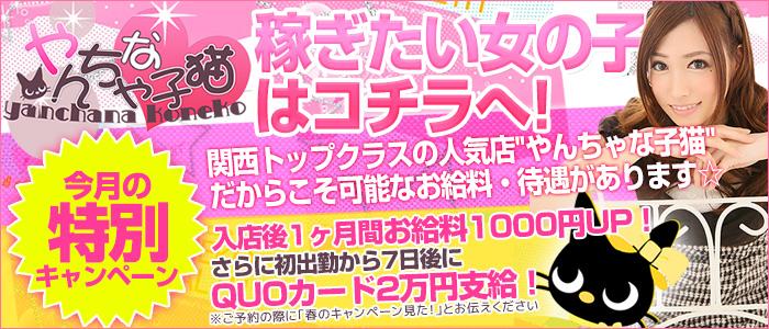 やんちゃな子猫 神戸元町店