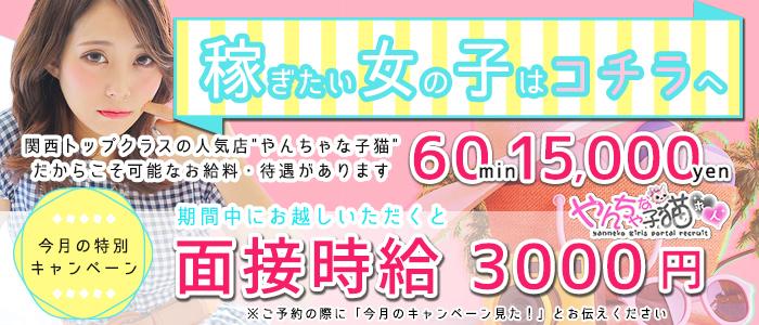 やんちゃな子猫 京橋店の求人画像