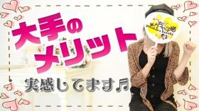 やんちゃな子猫 京橋店の求人動画