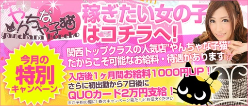 やんちゃな子猫 日本橋店