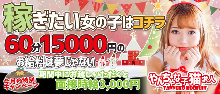やんちゃな子猫神戸三宮店の求人画像