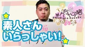 やんちゃな子猫神戸三宮店の求人動画