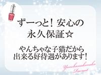 やんちゃな子猫 堂山店で働くメリット3