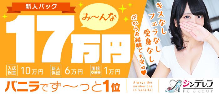 人妻・熟女・エステdeシンデレラ横浜(シンデレラグループ)