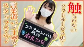 エステdeシンデレラ横浜の求人動画