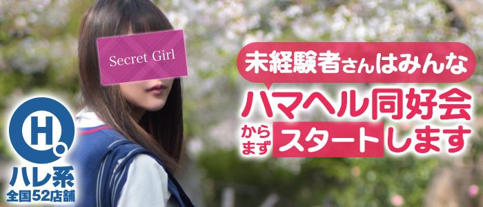 ハマヘル同好会(横浜ハレ系)の求人画像