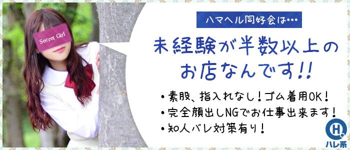 未経験・ハマヘル同好会(横浜ハレ系)