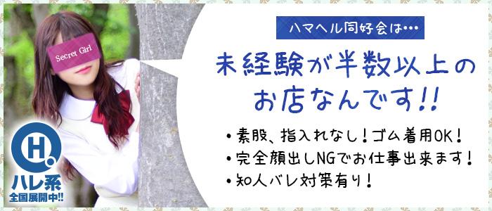 ハマヘル同好会(横浜ハレ系)の未経験求人画像