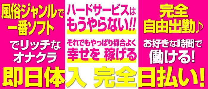 キティーズテラス横浜店(ステラグループ)の未経験求人画像