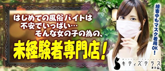 体験入店・キティーズテラス 横浜店