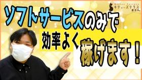 キティーズテラス横浜店(ステラグループ)の求人動画