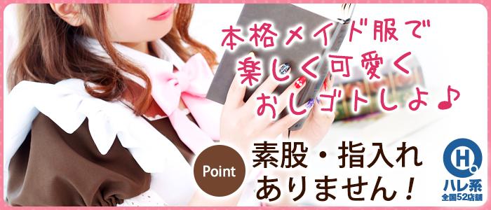 メイドin横浜(横浜ハレ系)の求人画像