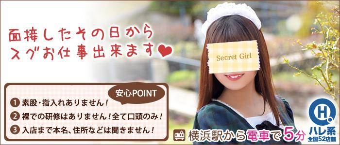 メイドin横浜(横浜ハレ系)の体験入店求人画像
