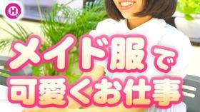 メイドin横浜(横浜ハレ系)のバニキシャ(女の子)動画