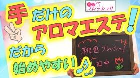 桃色フレッシュ!!(横浜ハレ系)のバニキシャ(スタッフ)動画