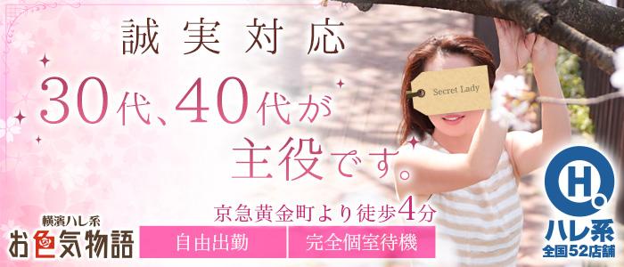 お色気物語(横浜ハレ系)の求人画像