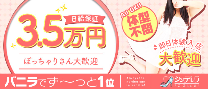 体験入店・横浜ぱんぷきん(シンデレラグループ)