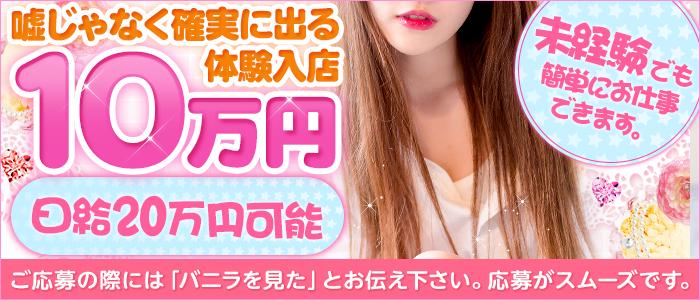 粋美-Suibiの体験入店求人画像