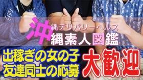 沖縄素人図鑑の求人動画